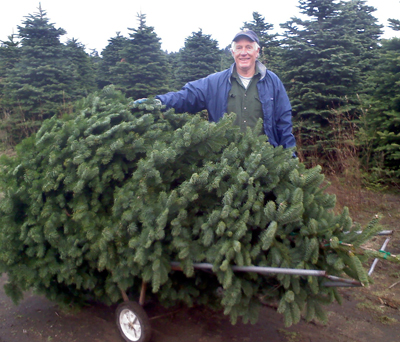 A successful hunt for a the perfect tree at one of Washington's Christmas tree farms. Photo: DNR