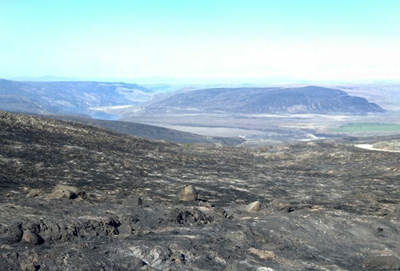 Thousands of acres of grasslands leased for grazing were charred in the Barker Canyon Lehey fires. Photo: DNR