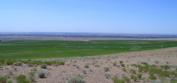 Crop circle helps make arrid state trust lands more productive.