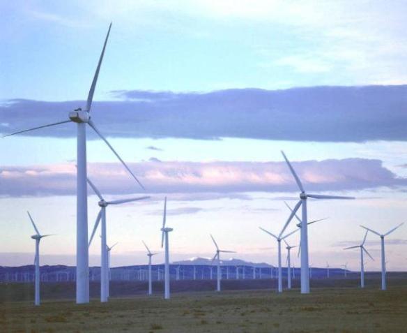 wind farm on state trust land